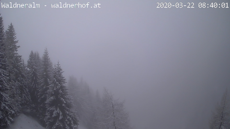 Webcam Waldneralm